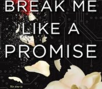 Book Blog Tour Review: Break Me Like A Promise by Tiffany Schmidt